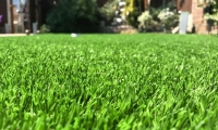 Savanna Artificial Grass 2018